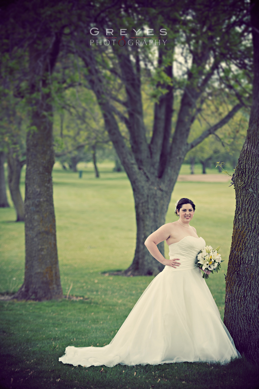 Madison Wedding Nicole Dan